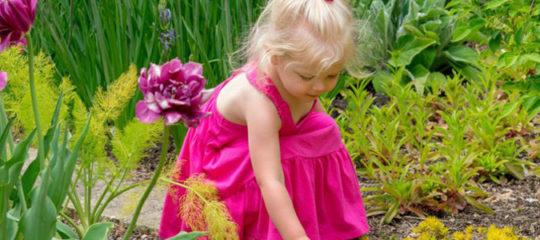 Découvrez le jardin sensoriel en Normandie